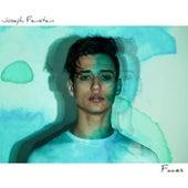 Faces by Joseph Feinstein