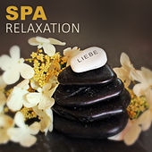 Spa Relaxation by Various Artists