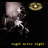 Night After Night by Jerry Jeff Walker