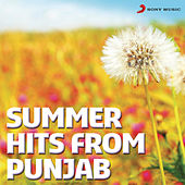 Summer Hits From Punjab by Various Artists