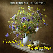 Big Country Collection: Country Home Gatherings, Vol. 1 by Various Artists