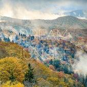 Dream Jungle by Yoga Music