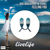 Feeling You by Jose Ogalla