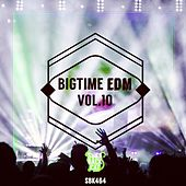 Bigtime EDM, Vol. 10 by Various Artists