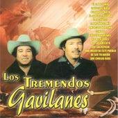 El 24 de Junio by Los Tremendos Gavilanes