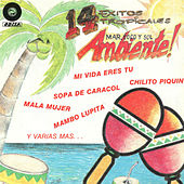 14 Exitos Tropicales by Various Artists