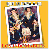 Que Le Pasa A Mi by Los Indomables