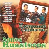 Sones Huastecos by Los Hermanos Calderon