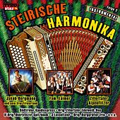 Steirische Harmonika - Folge 2 - Instrumental by Various Artists