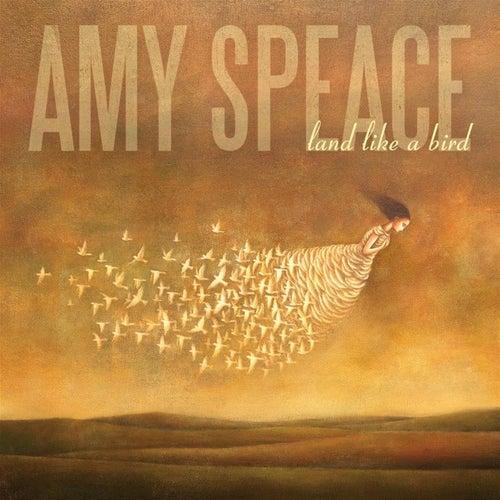 Land Like a Bird by Amy Speace