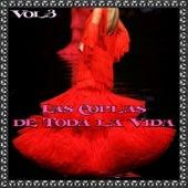 Las Coplas de Toda la Vida, Vol. 3 by Various Artists