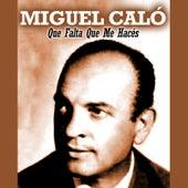 Que Falta Que Me Hacés by Miguel Caló