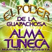 El Poder de la Guapachosa. Música de Guatemala para los Latinos by Marimba Orquesta Alma Tuneca
