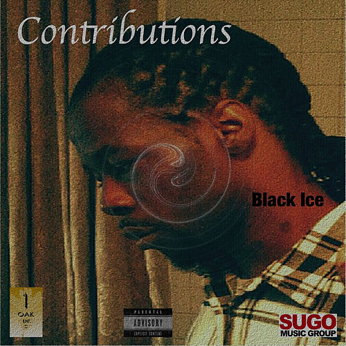 Contributions by Black Ice