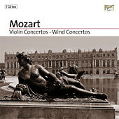 Violin Concertos - Wind Concertos Part: 4 by Various Artists