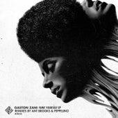 Funk Yourself Ep by Gaston Zani