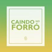 Caindo no Forró (Ao Vivo) by Various Artists