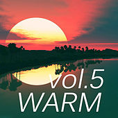 Warm Music vol.5 by Various Artists