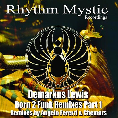 Born 2 Funk Remixed, Pt. 1 by Demarkus Lewis