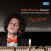Passion by Fabio Martino