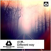 Different Way by D.I.M.