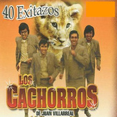 40 Exitazos by Los Cachorros de Juan Villareal