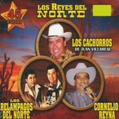 Los Reyes Del Norte by Various Artists