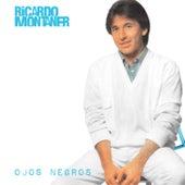 No Me Quites Tu Amor by Ricardo Montaner