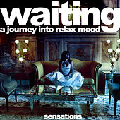 Waiting: A Journey into Relax Mood by Various Artists