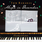 Magic in December by Tom Barabas