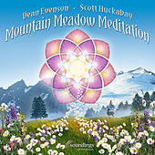 Mountain Meadow Meditation by Various Artists