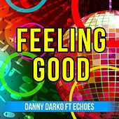 Feeling Good (feat. Echoes) by Danny Darko