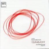 Transient by Kasia Kadłubowska