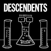 Without Love by Descendents