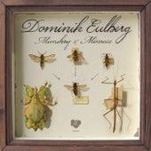 Mimikry & Mimese EP by Dominik Eulberg