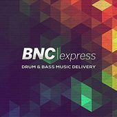 Drum&Bass Music Delivery by Various Artists