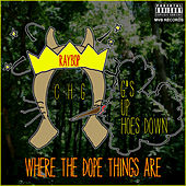 Where the Dope Things Are - Single by Ray Bop