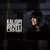 Pozeli  - Karaoke Version by Kaliopi