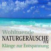 Wohltuende Naturgeräusche Pur - Klänge zur Entspannung by Torsten Abrolat