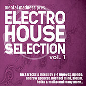 Mental Madness pres. Electro House Selection Vol. 1 by Various Artists