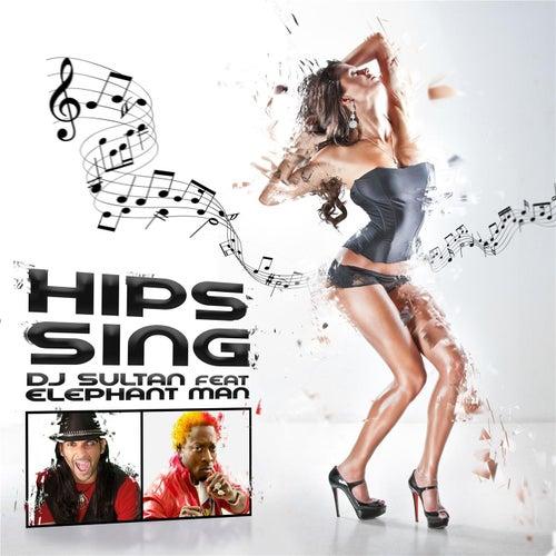 DJ SULTAN FEAT. ELEPHANT MAN - HIPS SING