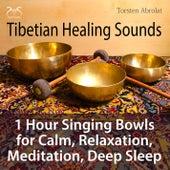 Tibetian Healing Sounds - 1 Hour Singing Bowls for Calm, Relaxation, Meditation, Deep Sleep by Torsten Abrolat