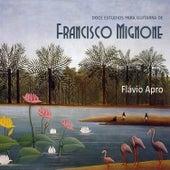 Doce Estudios para Guitarra de Francisco Mignone by Flávio Apro