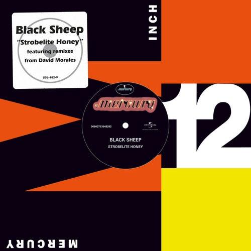 Strobelite Honey by Black Sheep