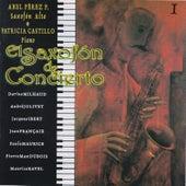 El Saxofón de Concierto by Patricia Castillo