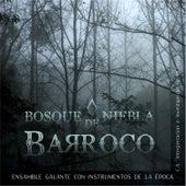 Bosque de Niebla Barroco by Ensamble Galante