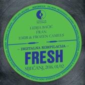Fresh Siječanj, 2016. 01/02 by Various Artists