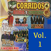 30 Corridos Con Banda y Norteno, Vol. 1 by Various Artists
