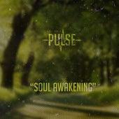 Soul Awakening by Pulse