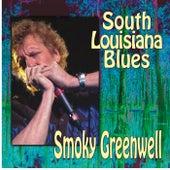 South Louisiana Blues by Smoky Greenwell